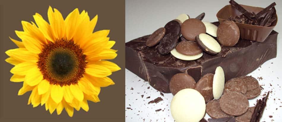 image_chocolat_smilly